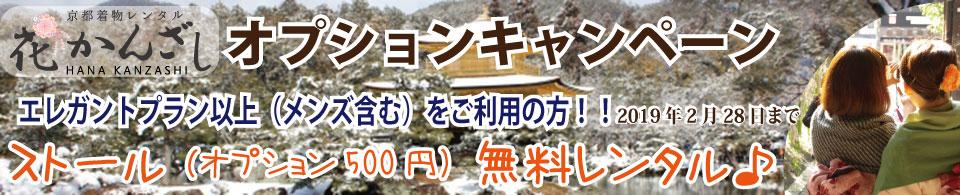 京都着物レンタル花かんざし 2月のキャンペーン!