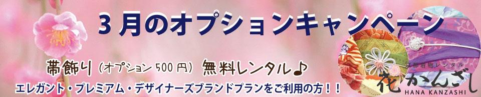 京都着物レンタル花かんざし 3月のキャンペーン!