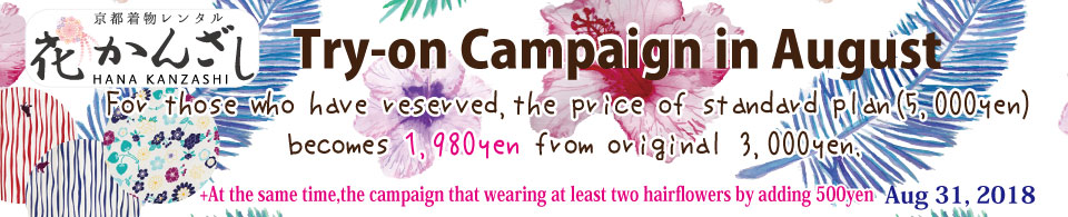 Try-on Campaign in June
