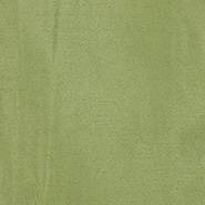 濃い緑の生地