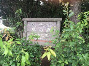 下鴨神社 糺ノ森