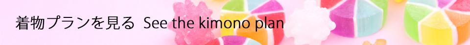seethekimonoplan-banner
