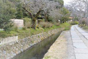 京都着物レンタル花かんざし 哲学の道