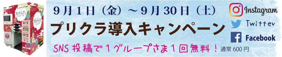 京都着物レンタル花かんざしプリクラ