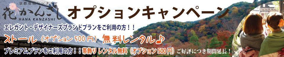京都駅からひと駅花かんざしキャンペーン