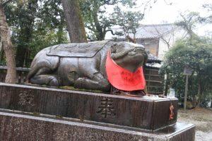 京都駅からひと駅花かんざし 北野天満宮