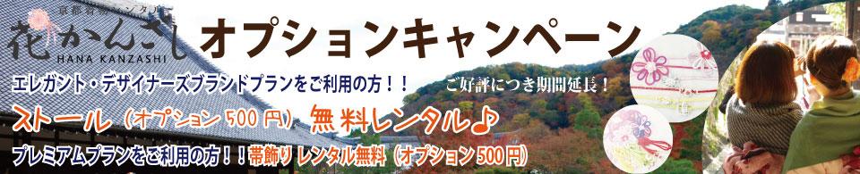 京都駅からひと駅花かんざし オプション