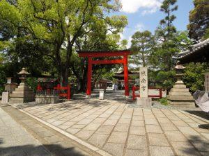京都駅からひと駅花かんざし 城南宮しだれ梅