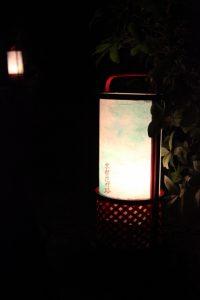 京都駅からひと駅花かんざし 東山花灯路