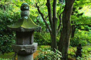 京都着物レンタル花かんざし 初夏の京都