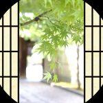 京都きものレンタル 花かんざし