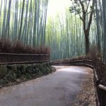 京都着物レンタル花かんざし 雨の京都
