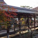 京都着物レンタル花かんざし 大覚寺