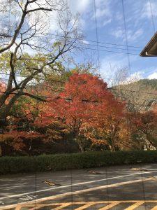 京都着物レンタル花かんざし 秋の京都