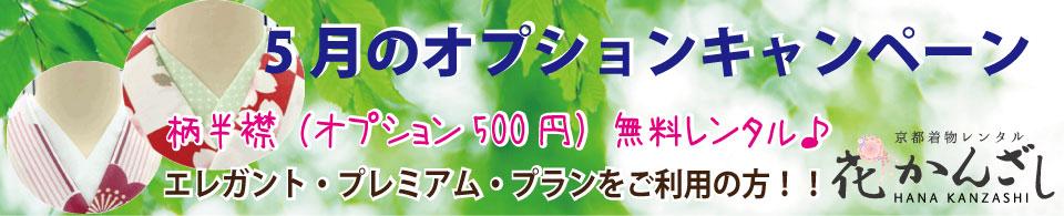 京都着物レンタル花かんざし5月のキャンペーン柄半襟無料